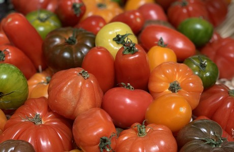 שטויות במיץ עגבניות