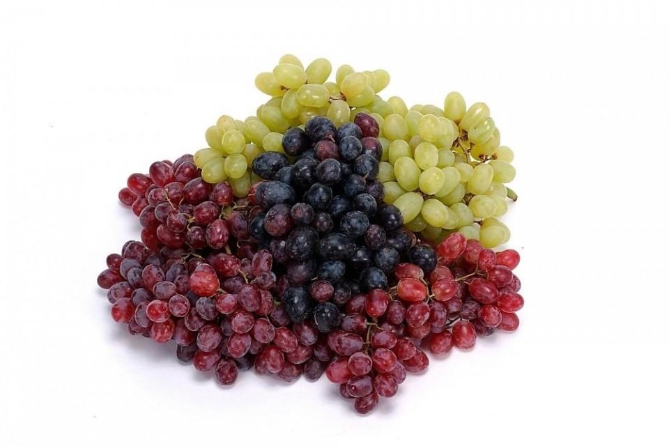 ענבים בכל מיני צבעים